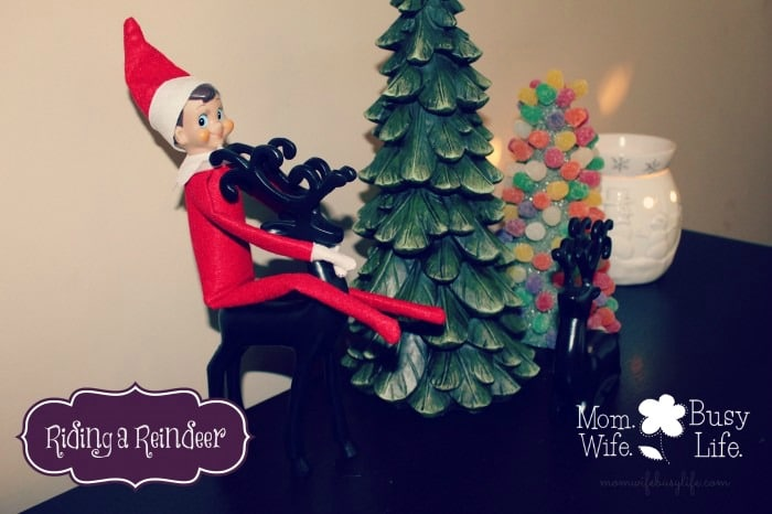 elf on the shelf ideas riding a reindeer