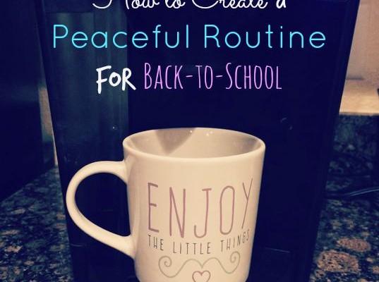 peaceful routine bts 2