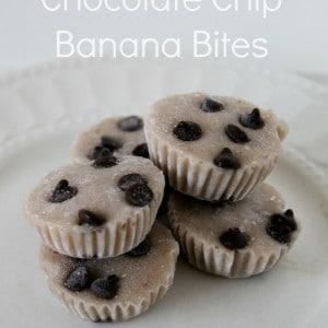 chocolate chip banana bites