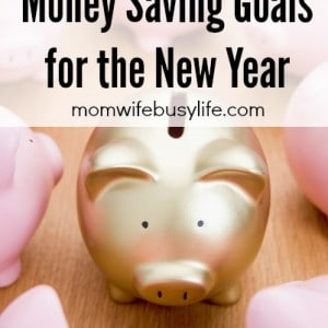 Money Saving Goal for the New Year