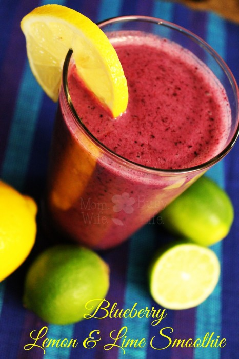 Blueberry Lemon and Lime Smoothie