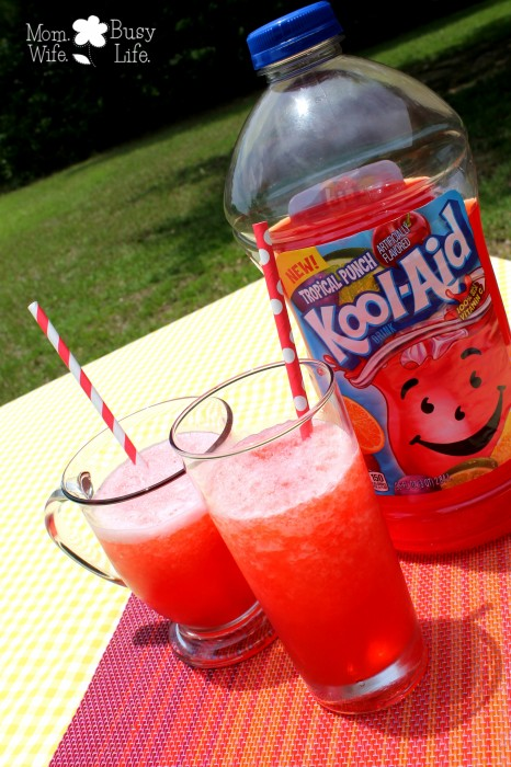 fruit juice slush 2