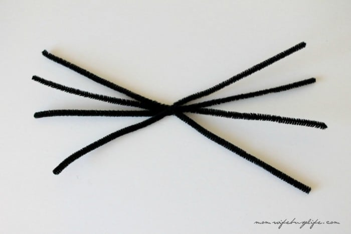DIY Spider Craft