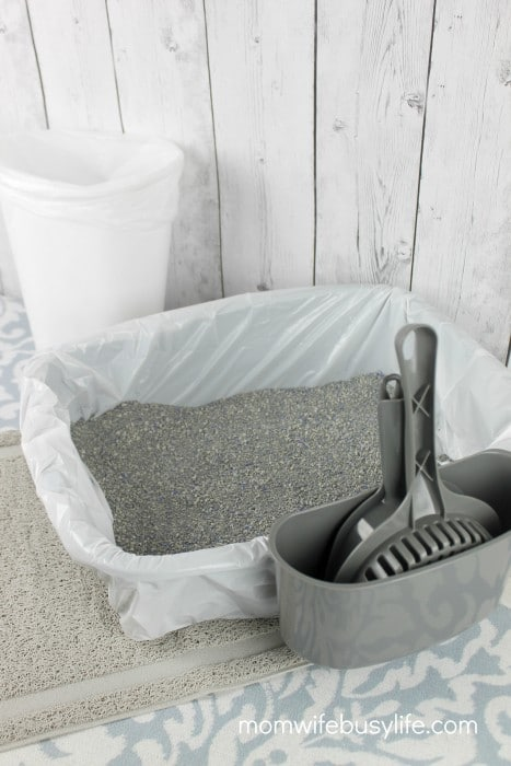 How to Keep the Cat Litter Area Clean and Tidy