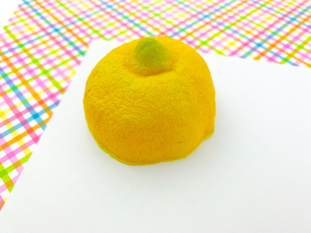 Lemon Stamp Art