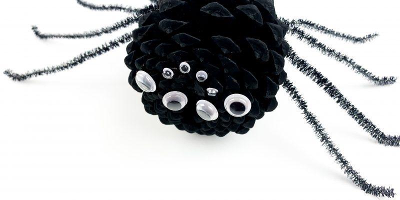 Pine Cone Spider Craft for Kids