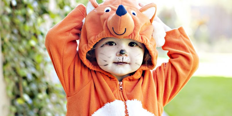 Fox Costumes for the Family