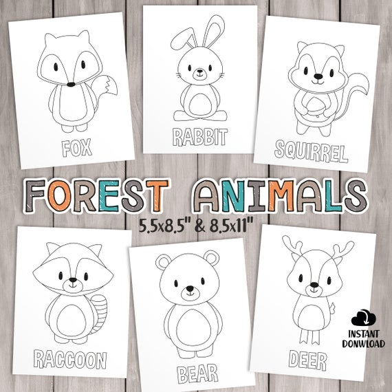 Woodland Animal Coloring Pages And Activities - Mom. Wife. Busy Life.