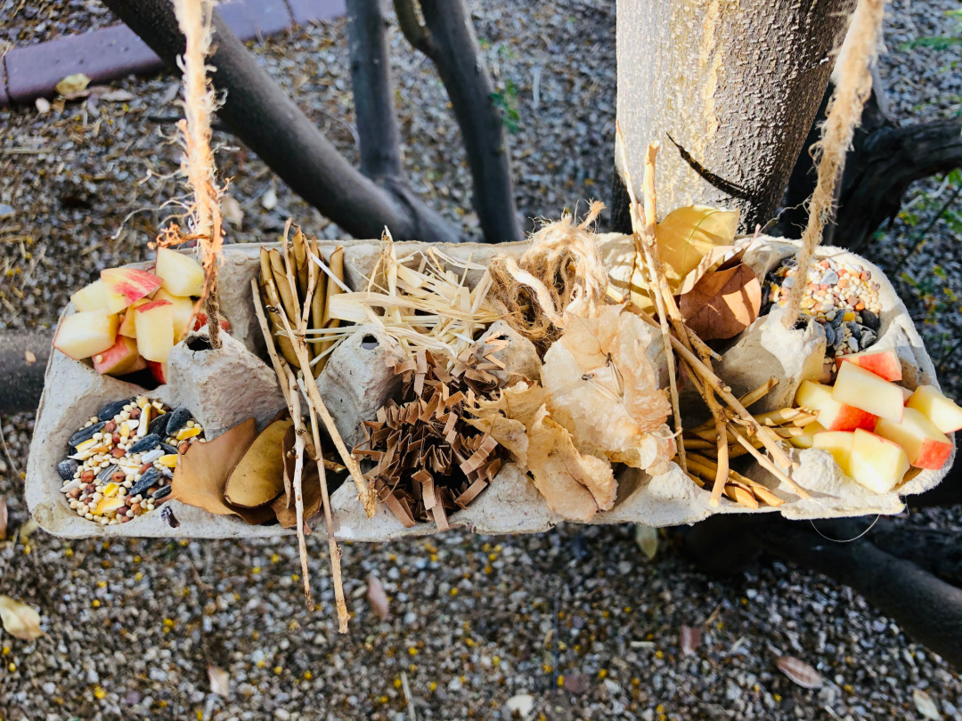 Bird Nesting Material and Food Holder
